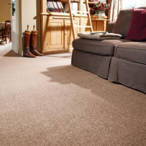 Saxony Carpets for homes