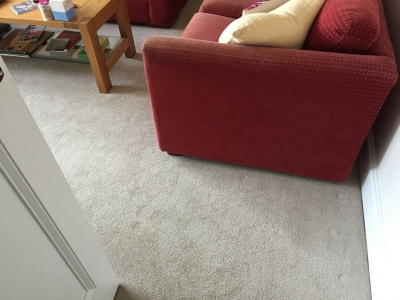 Twist Pile Carpet for landing